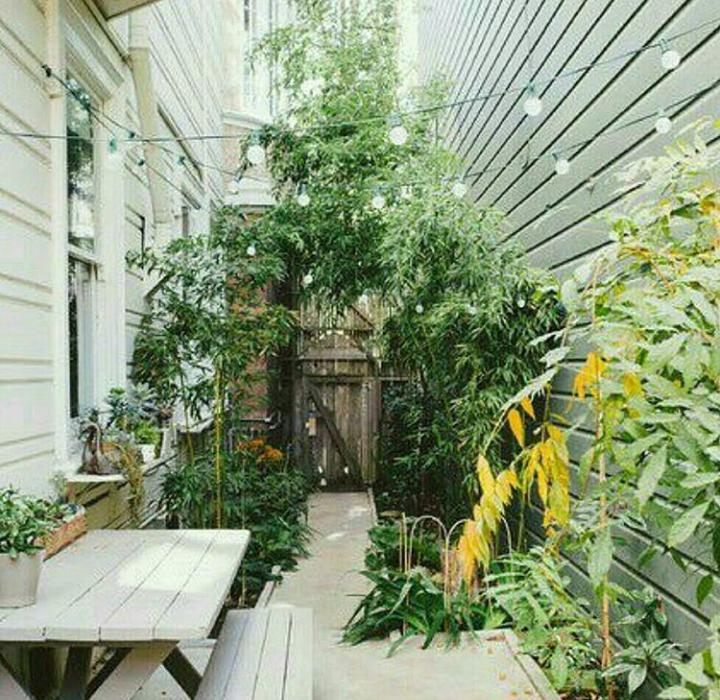 دکوراسیون حیاط خلوت