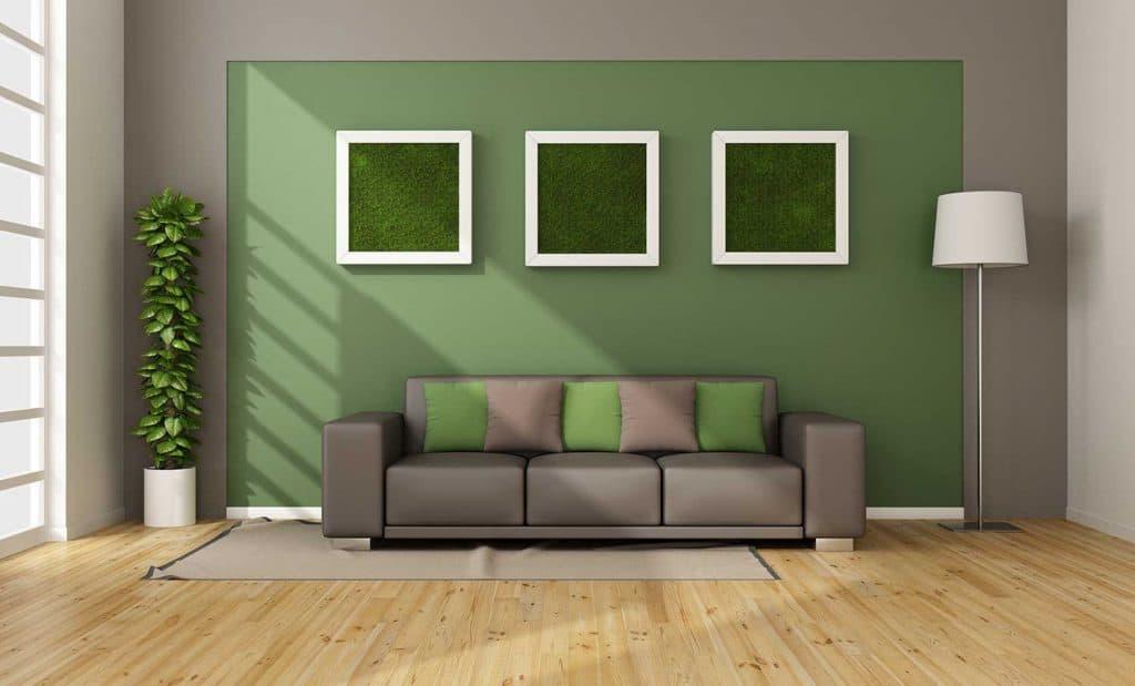 تزیین دیوار اتاق پذیرایی با گیاهان آپارتمانی